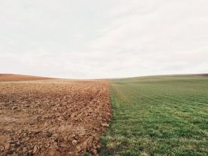 продажба на земя